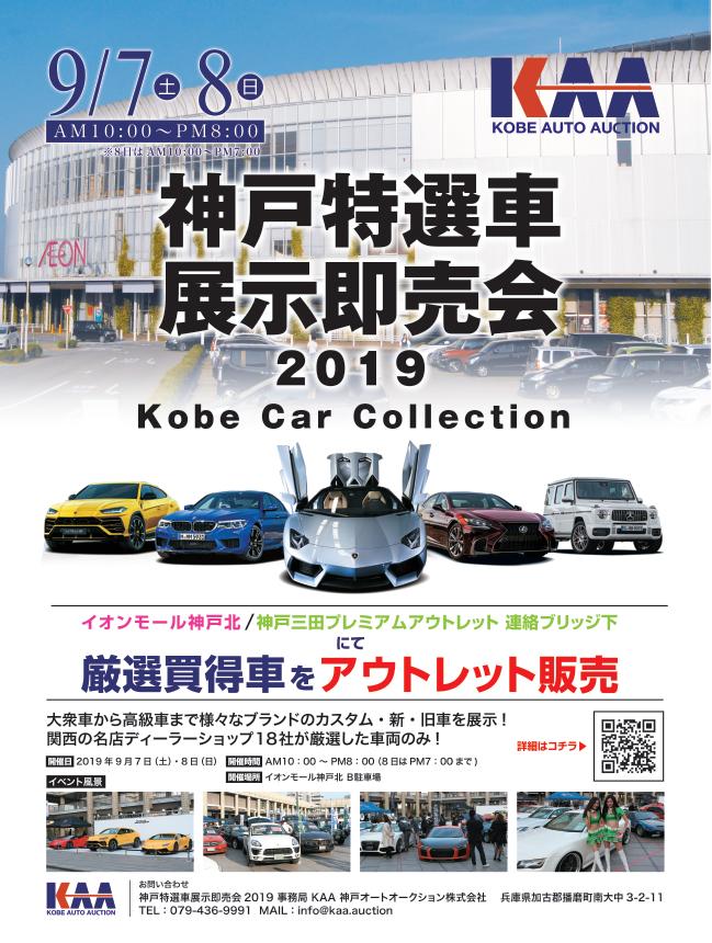 Amazon.co.jp: 武藤商事 プラリペア クリアー ...